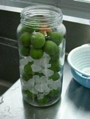 梅酒の造り方:氷砂糖と梅